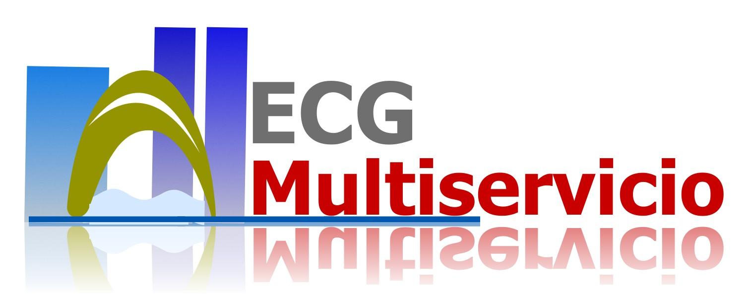 Ecg Multiservicio