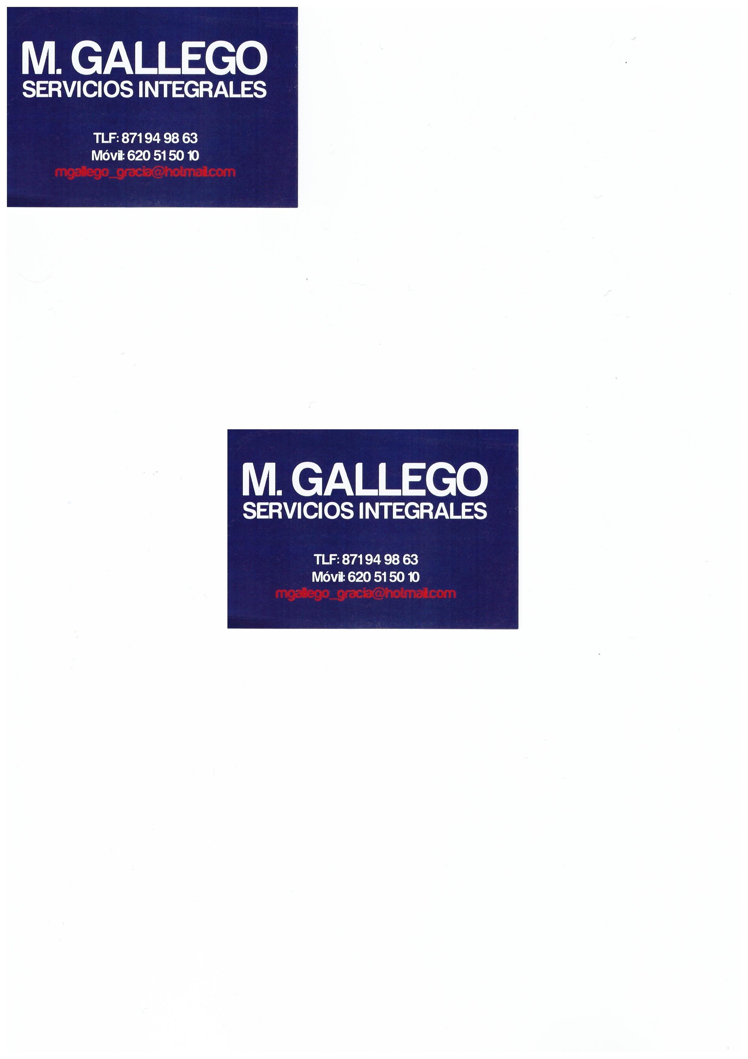 M Gallego