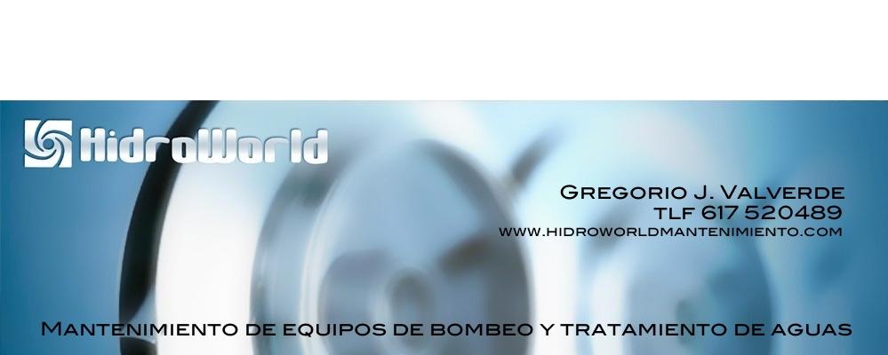 Hidroworld Mantenimiento