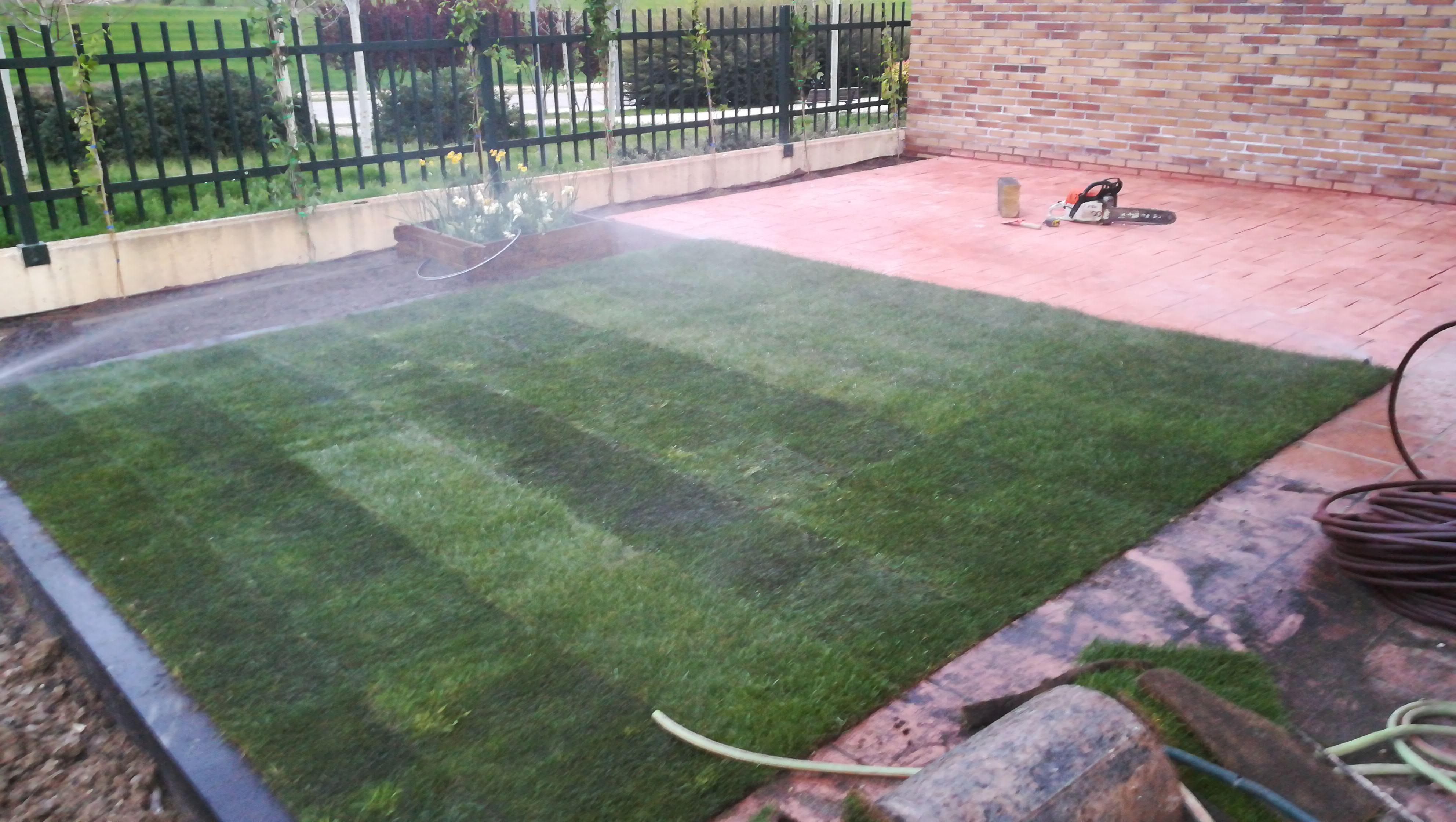 Limpiezas y jardinera ragumo