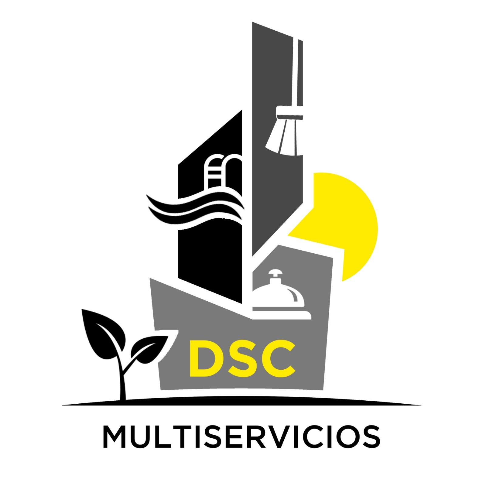 Dsc Servicios