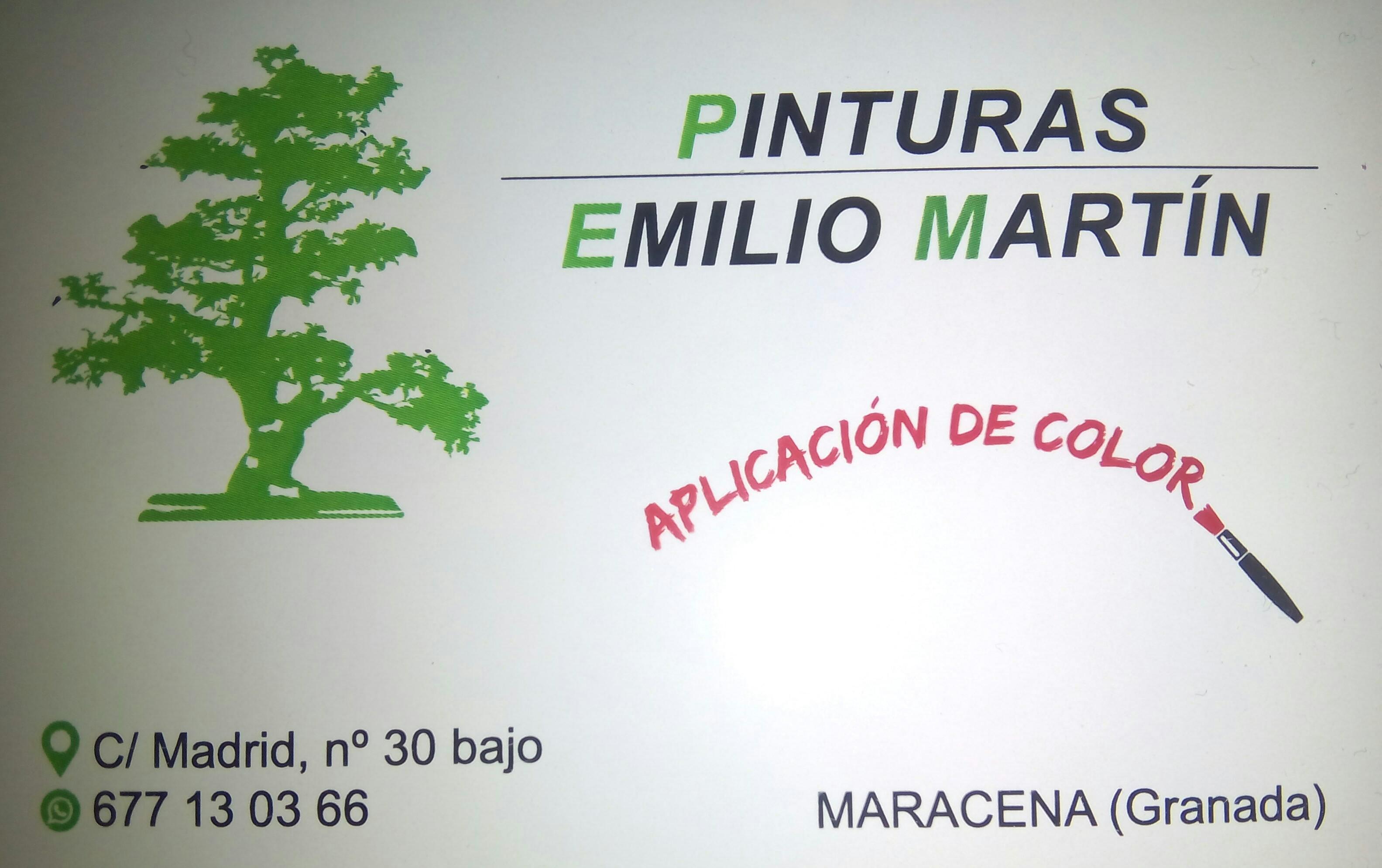 Pinturas Emilio Martín