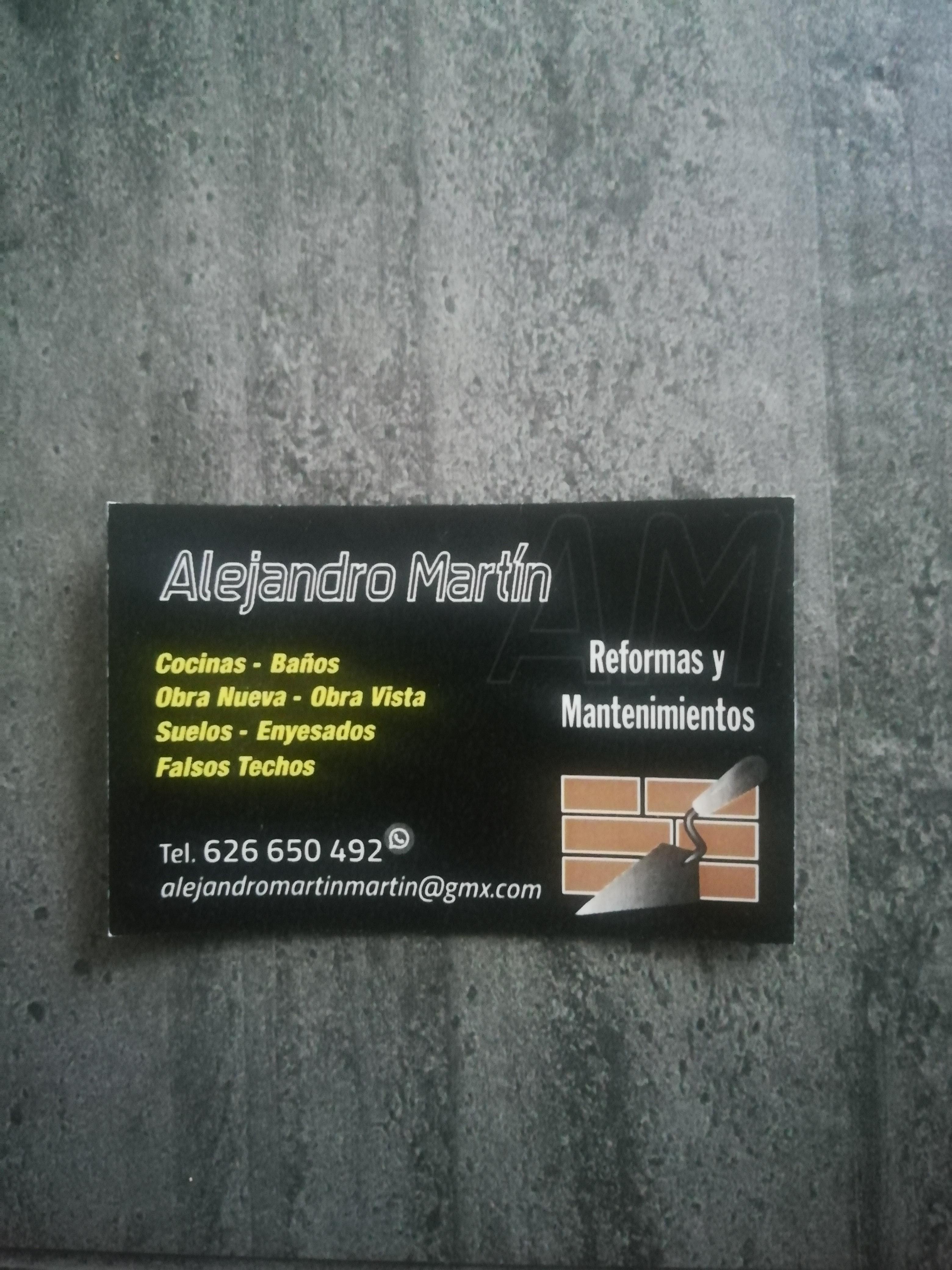 Reformas Alejandro Martin