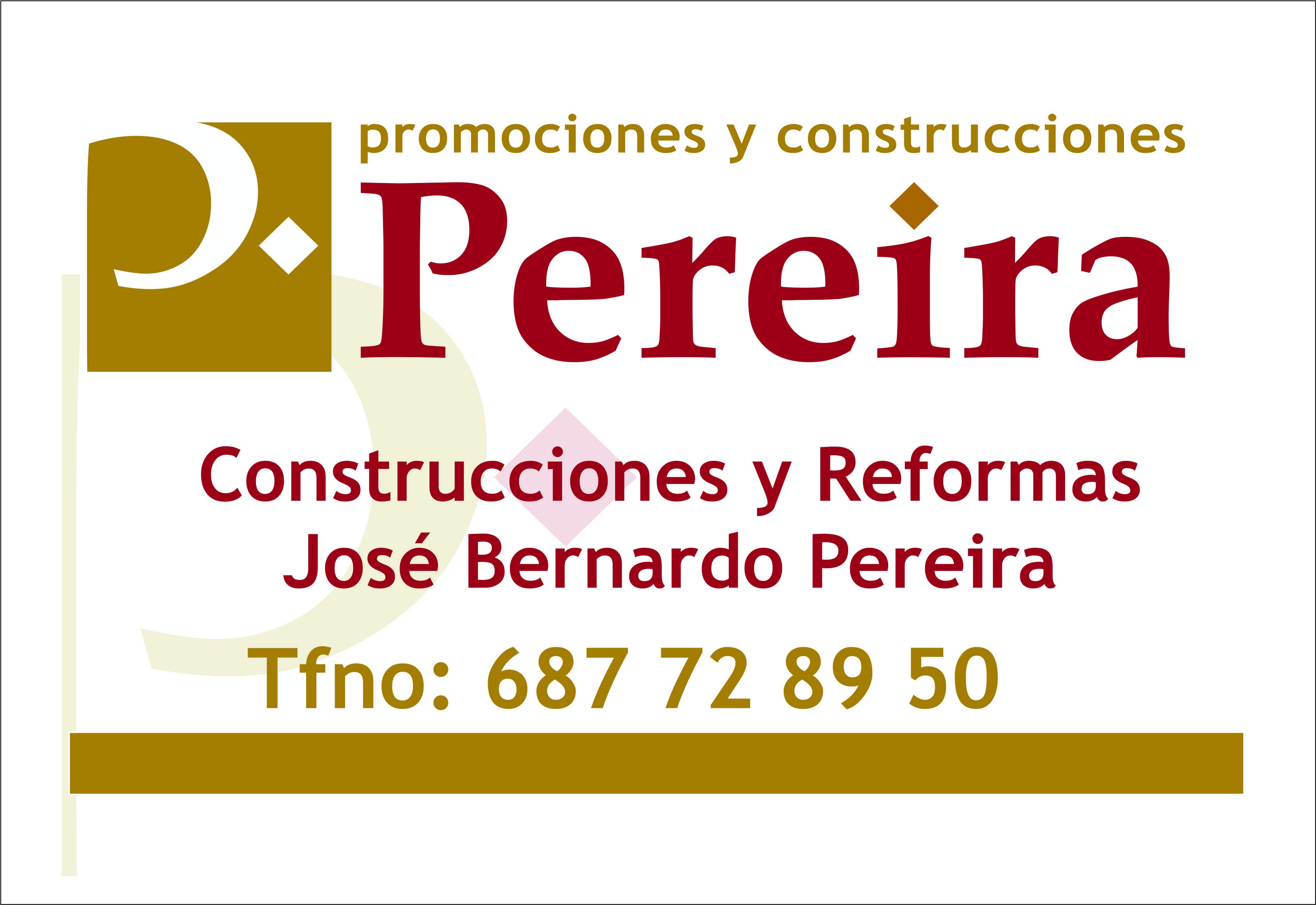Reformas Jose Bernardo Pereira