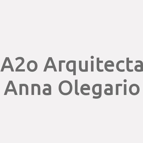 A2o. Arquitecta Anna Olegario.