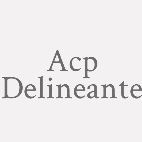 A.C.P. Delineante