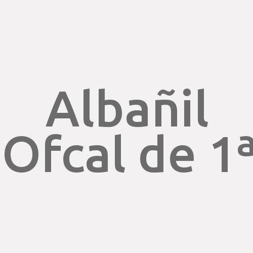 Albañil Ofcal De 1ª