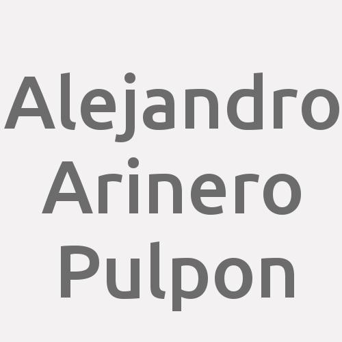 Alejandro Arinero Pulpon