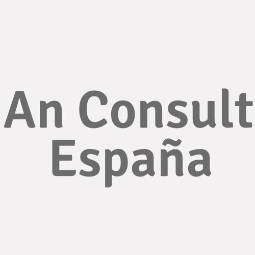 An Consult España