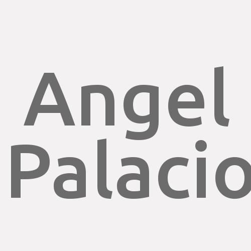 Angel Palacio