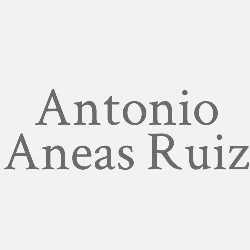 Antonio Aneas Ruiz
