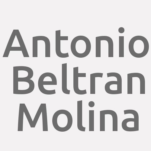 Antonio Beltran Molina