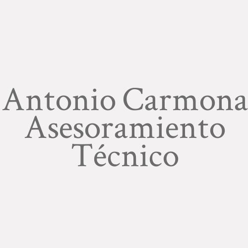 Antonio Carmona Asesoramiento Técnico