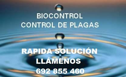 Biocontrol Control de Plaga Sl