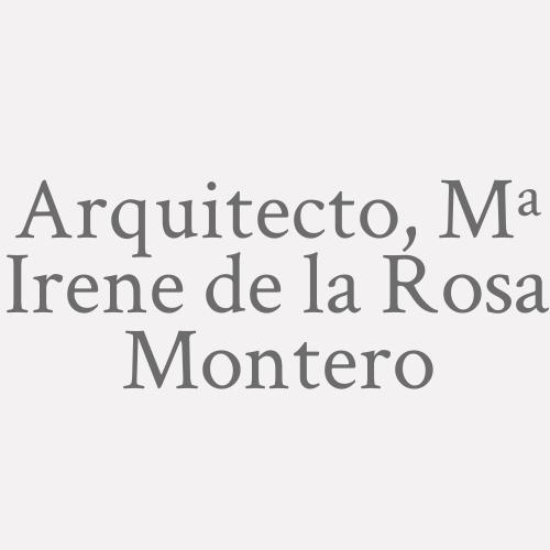Arquitecto, Mª. Irene De La Rosa Montero