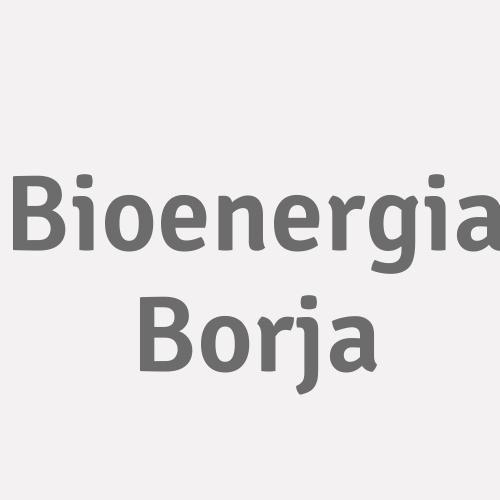 Bioenergía Borja