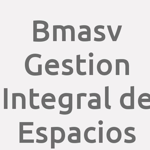 Bmasv Gestion Integral De Espacios