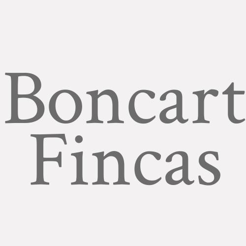 Boncart Fincas