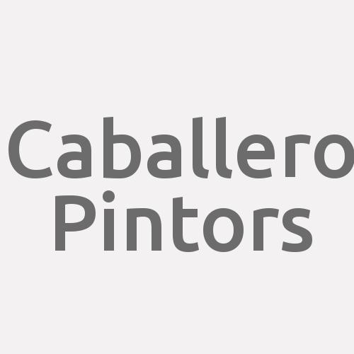Caballero Pintors