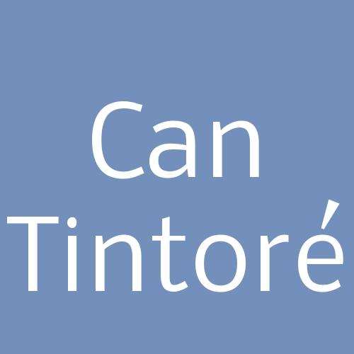 Can Tintoré
