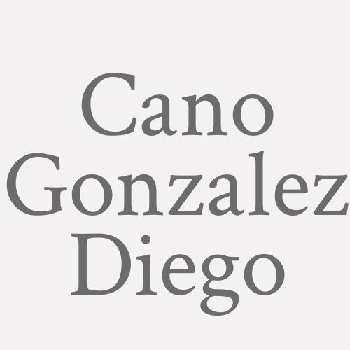 Cano Gonzalez Diego