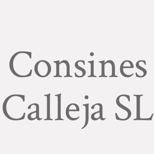 Construcciones Inés Calleja S.L.