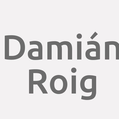 Damián Roig