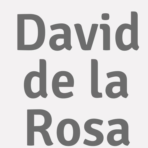 David De La Rosa