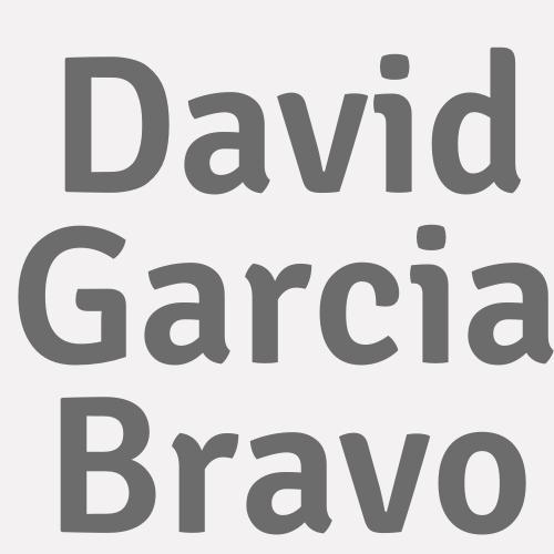 David Garcia Bravo