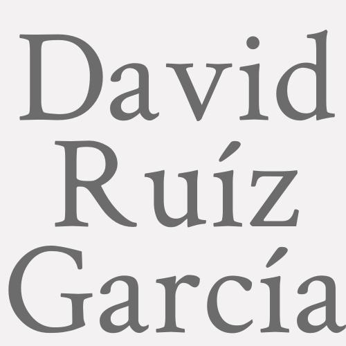 David Ruíz García