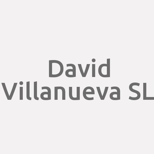 David Villanueva SL