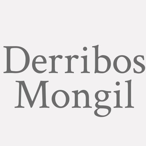 Derribos Mongil