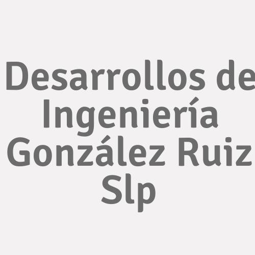 Desarrollos De Ingeniería González Ruiz Slp