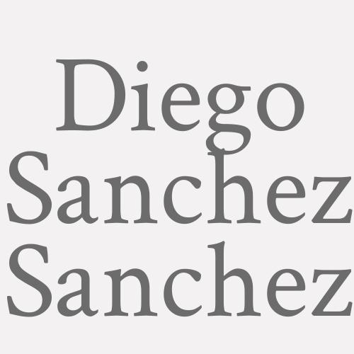 Diego Sanchez Sanchez