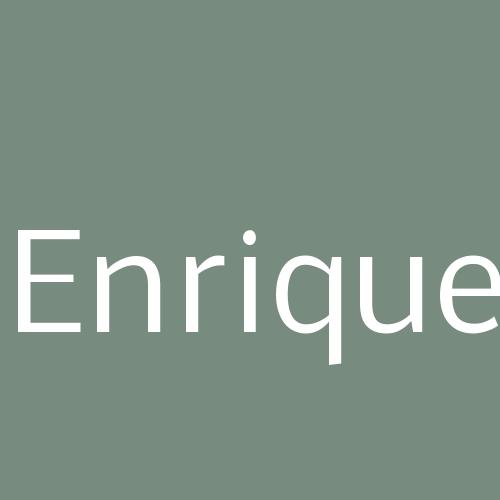 Enrique - Reformas En General