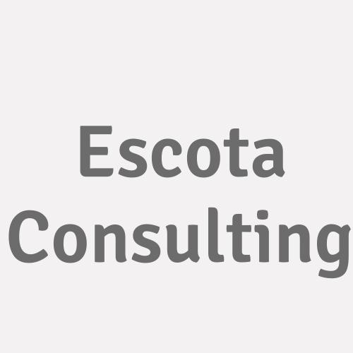 Escota Consulting