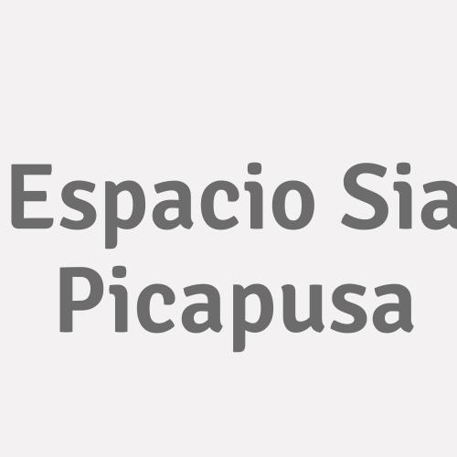 Espacio Sia Picapusa