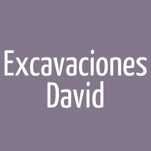 Excavaciones David