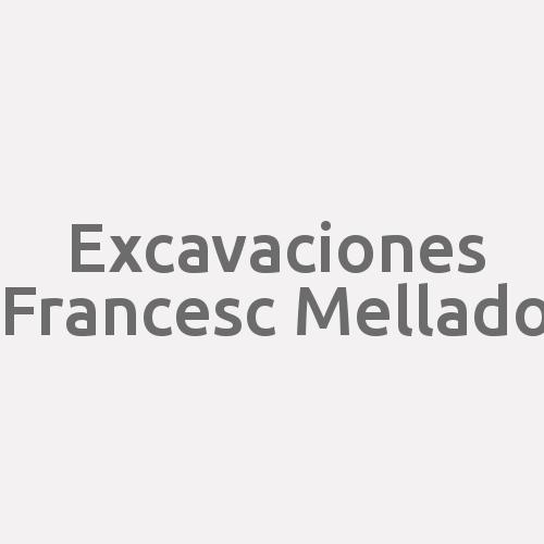 Excavaciones Francesc Mellado
