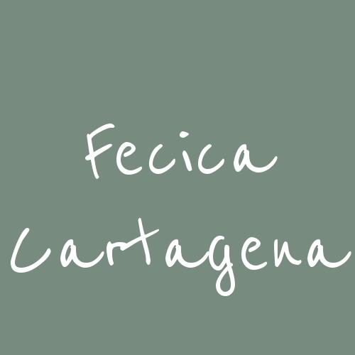 Fecica Cartagena