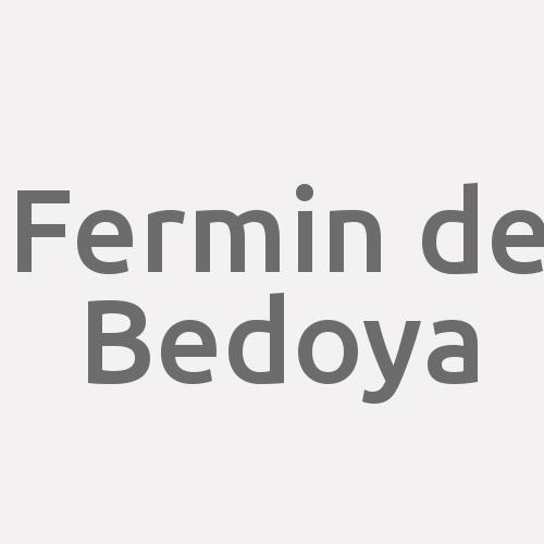 Fermin De Bedoya