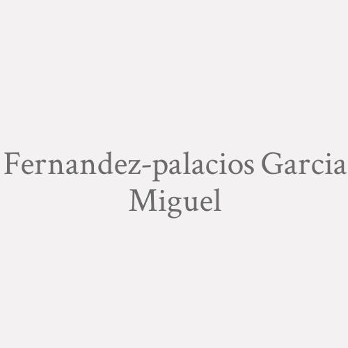 Fernandez-palacios Garcia Miguel