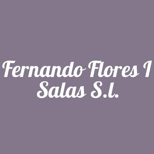 Fernando Flores I Salas S.l.