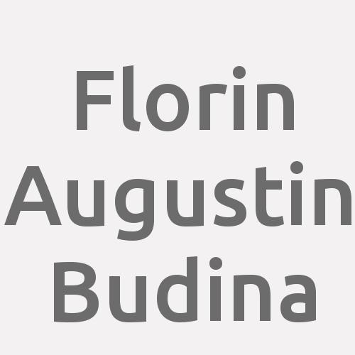 Florin Augustin Budina