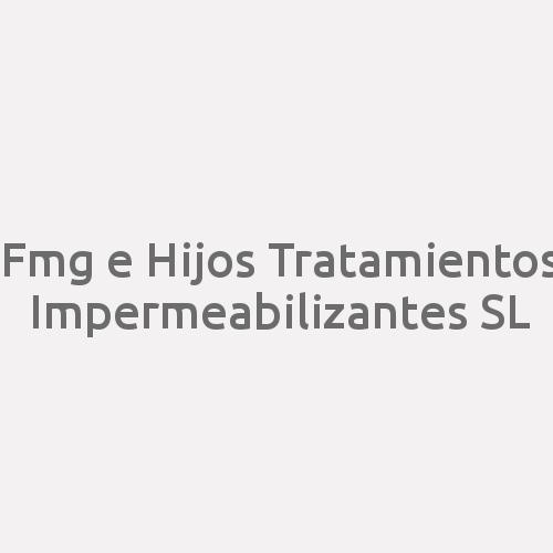 Fmg e Hijos Tratamientos Impermeabilizantes SL