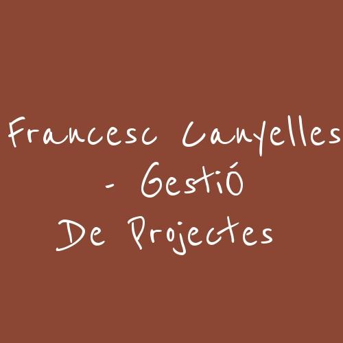 Francesc Canyelles - Gestió De Projectes
