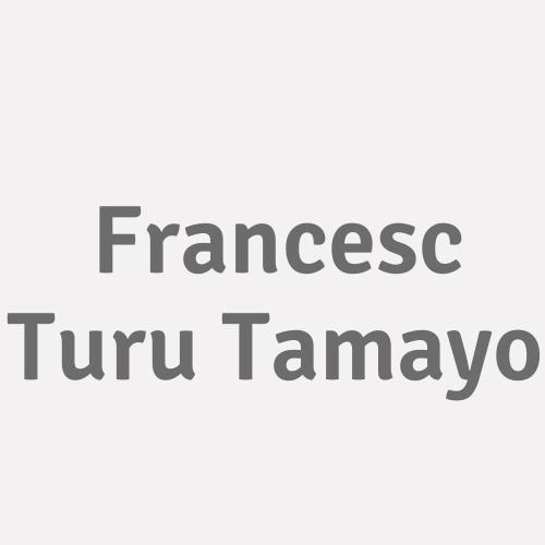 Francesc Turu Tamayo