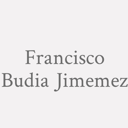 Francisco Budia Jimemez