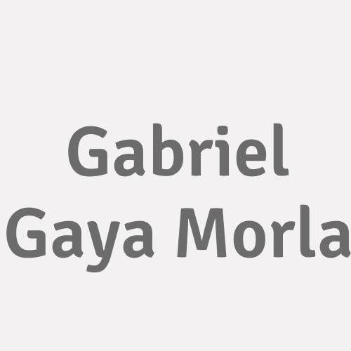 Gabriel Gaya Morla