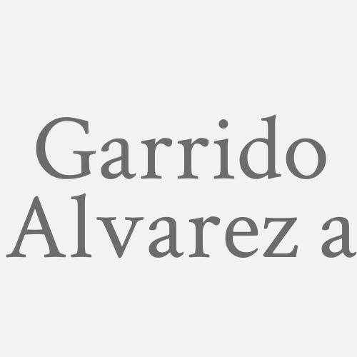 Garrido Alvarez a